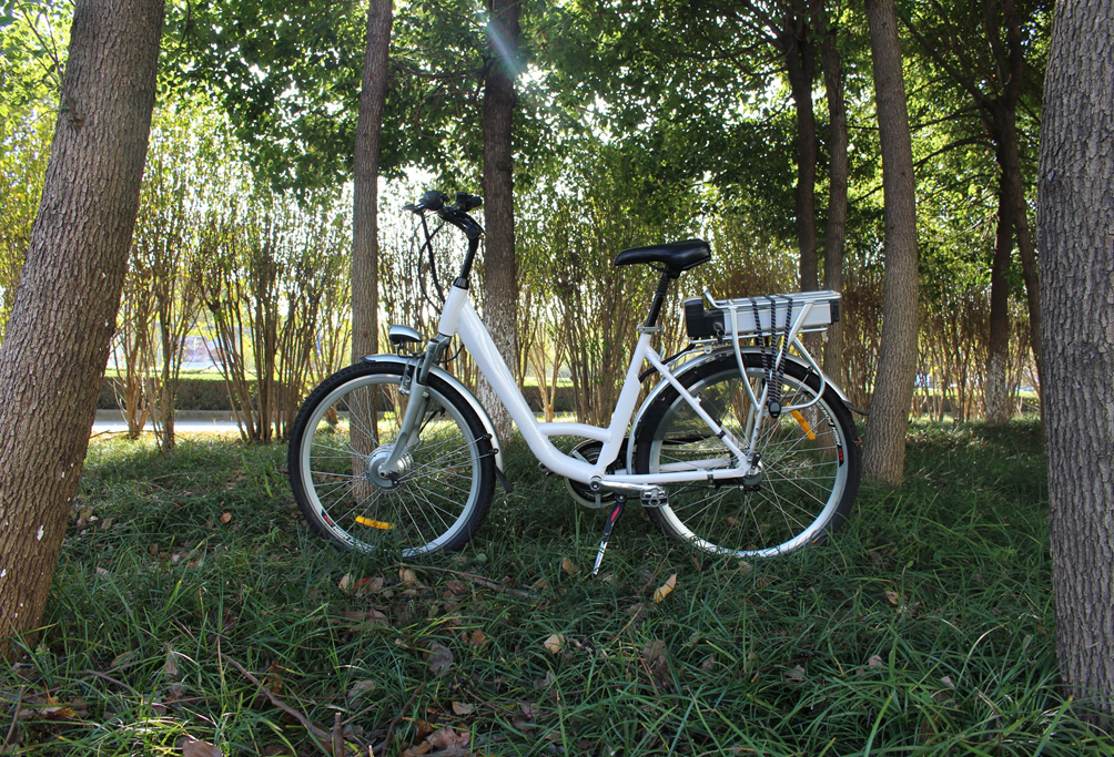 Jurni Model white coloured bike in forest