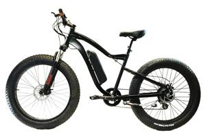Max Model bike in black