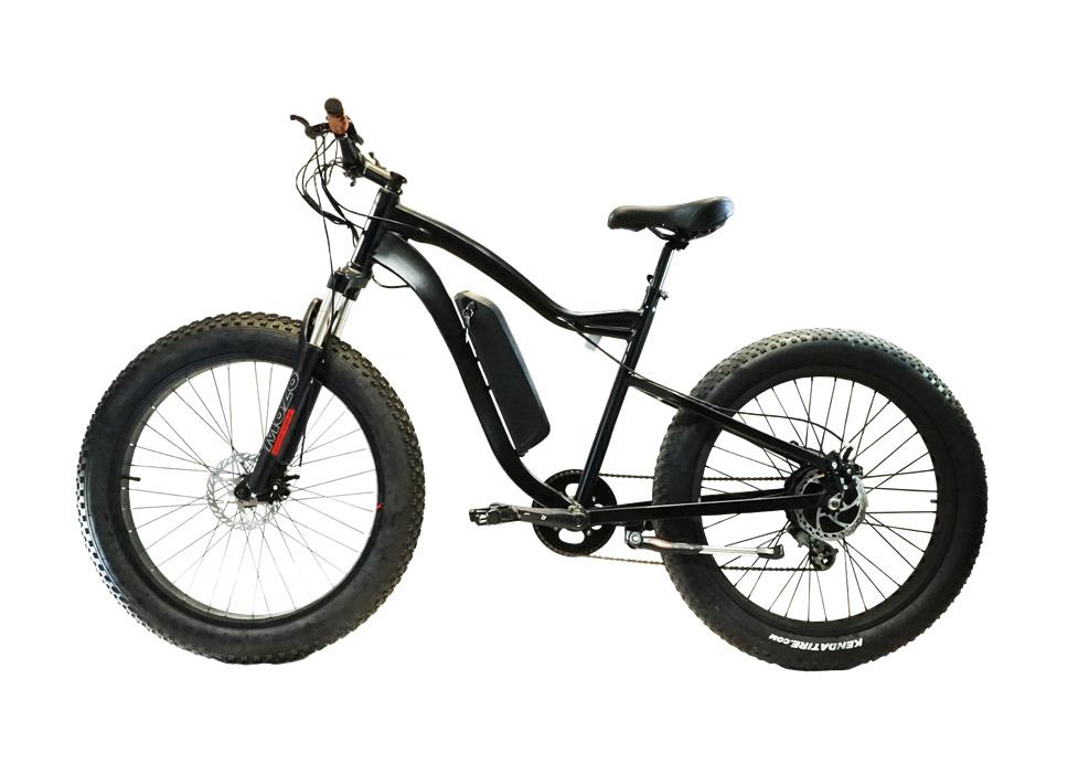Fat Tire Electric Bike in Alberta, CA
